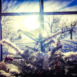 XMAS 2020 * Christmas Turkey Take Away