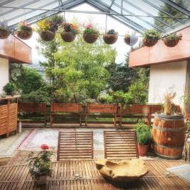 Zauberhafte Terrasse in Wien zu mieten